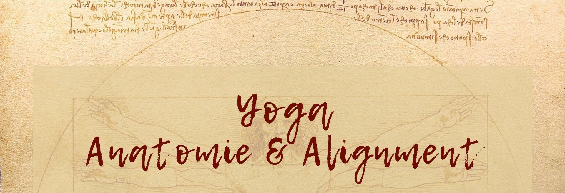Yoga Anatomie & Alignment